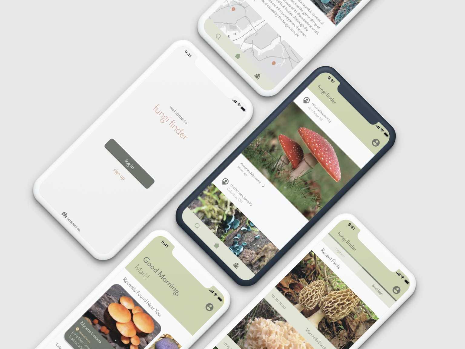 Fungi Finder app
