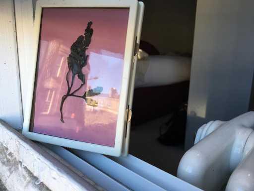 Lumen print in window